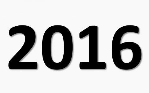 raport activitate 2016 etienne ignat